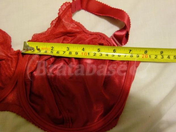 Cup width measured including underwires, 18.3cm